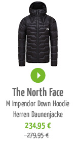 The North Face M Impendor Down Hoodie Herren Daunenjacke
